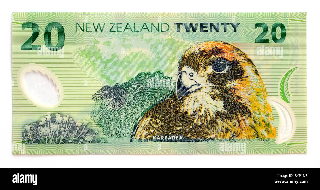 New Zealand Twenty 20 Dollar Bank Note. - Stock Image