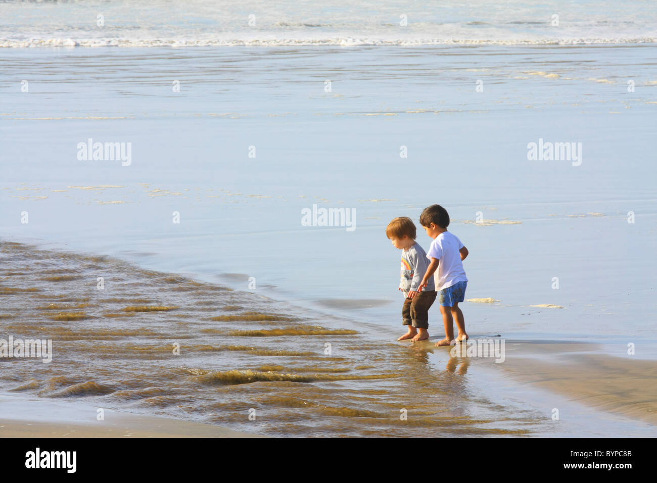 Two small children in T-shirts and shorts playing and walking barefoot in the water on a wet beach. - Stock Image