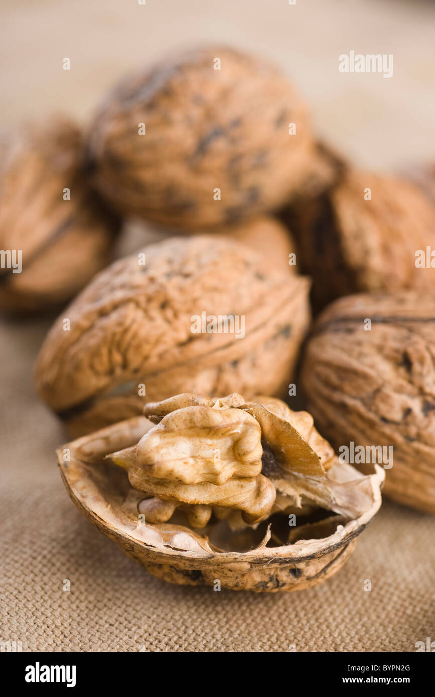 Shelling walnuts - Stock Image