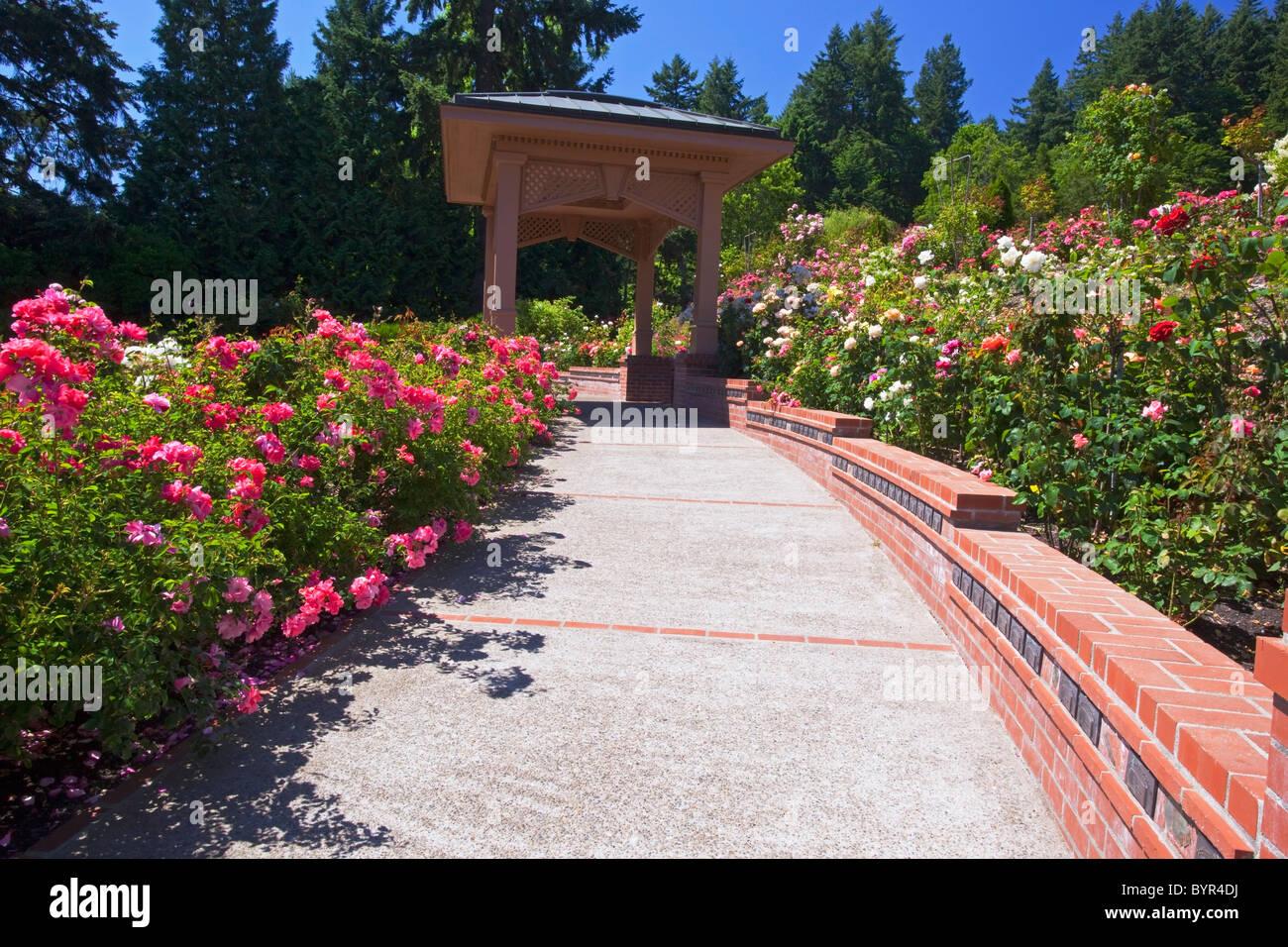 a trail and gazebo at the portland rose garden portland oregon united states of america - Portland Rose Garden