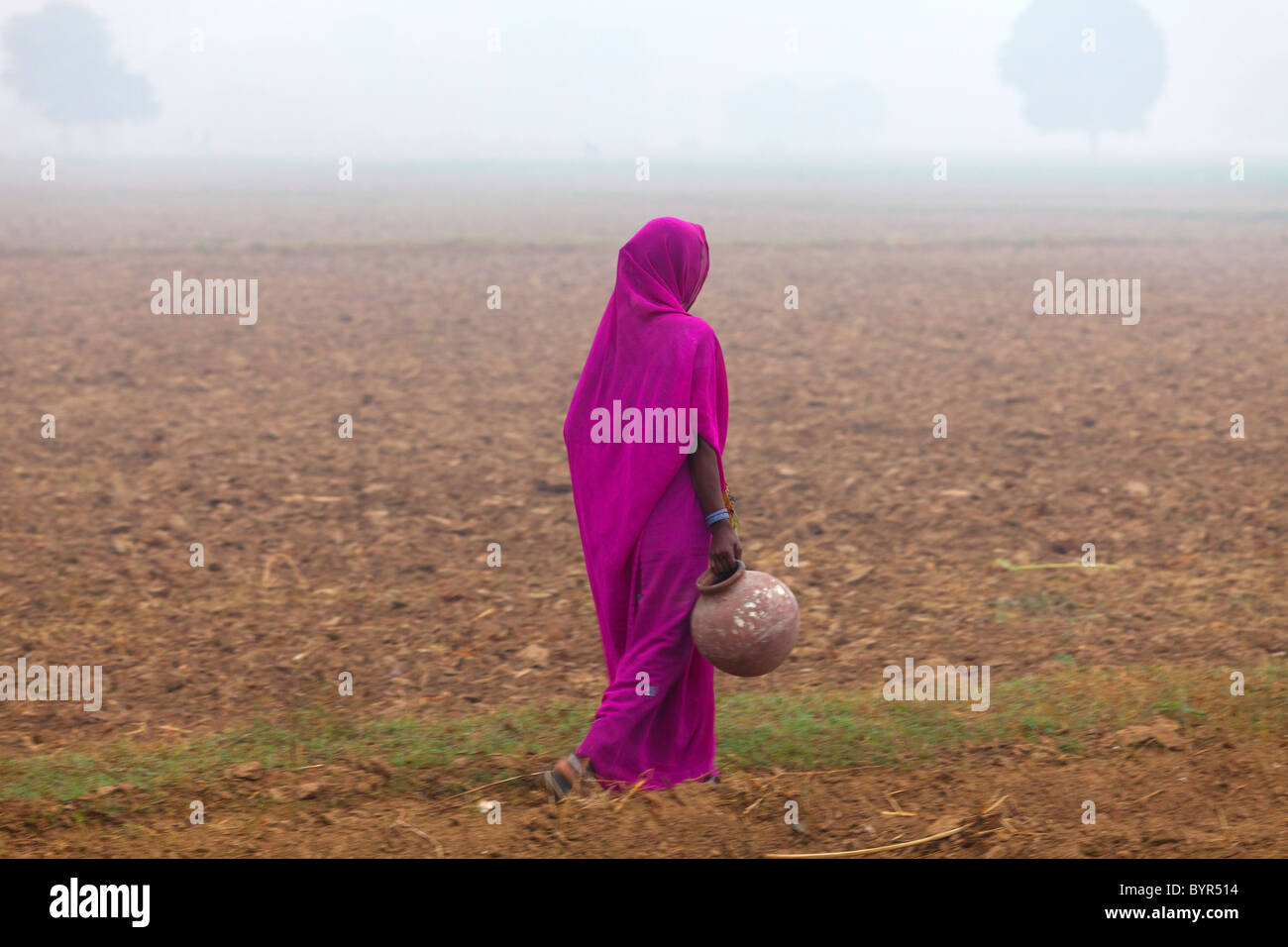 india, Uttar Pradesh, woman walking through misty field carrying water pot - Stock Image