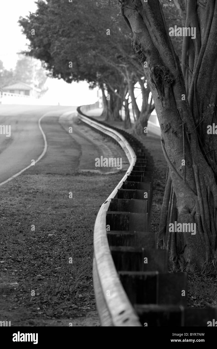 Black and white of road with curved railing and trees - Stock Image