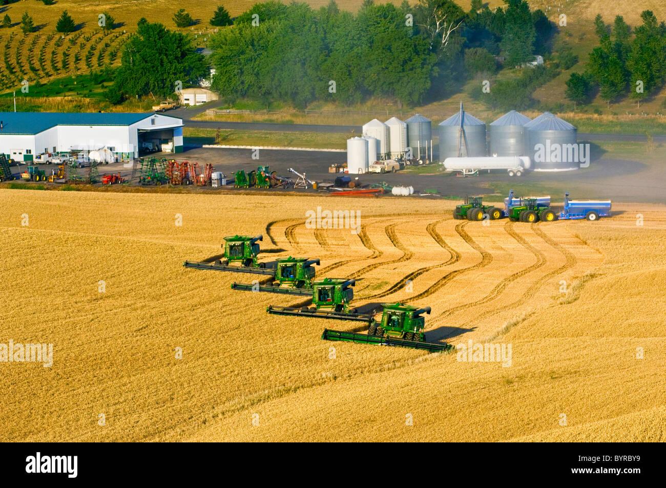 Four John Deere combines harvest wheat in tandem near the farm shop and maintenance yard / near Pullman, Washington, - Stock Image