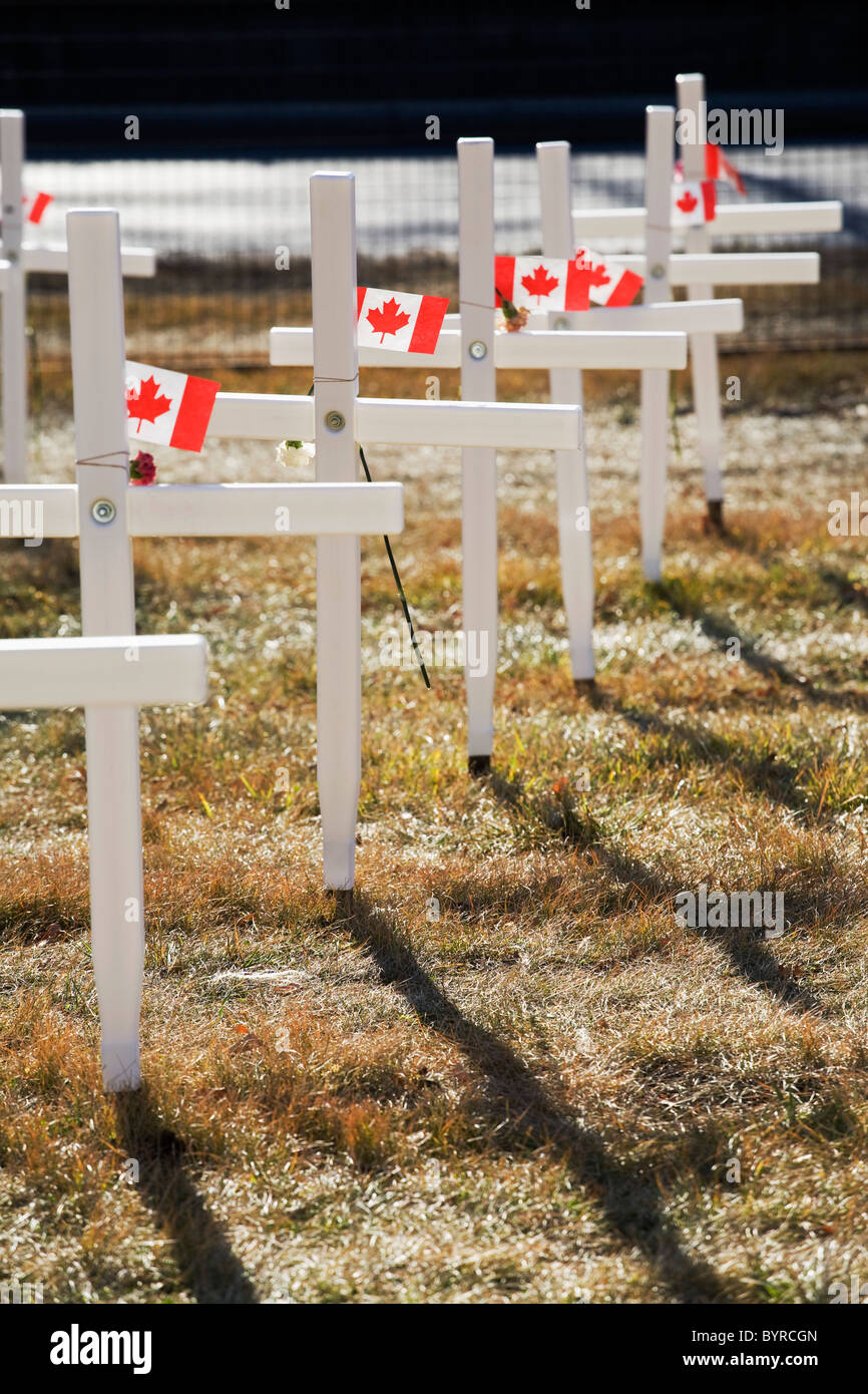 white crosses in a field with canadian flags; calgary, alberta, canada - Stock Image