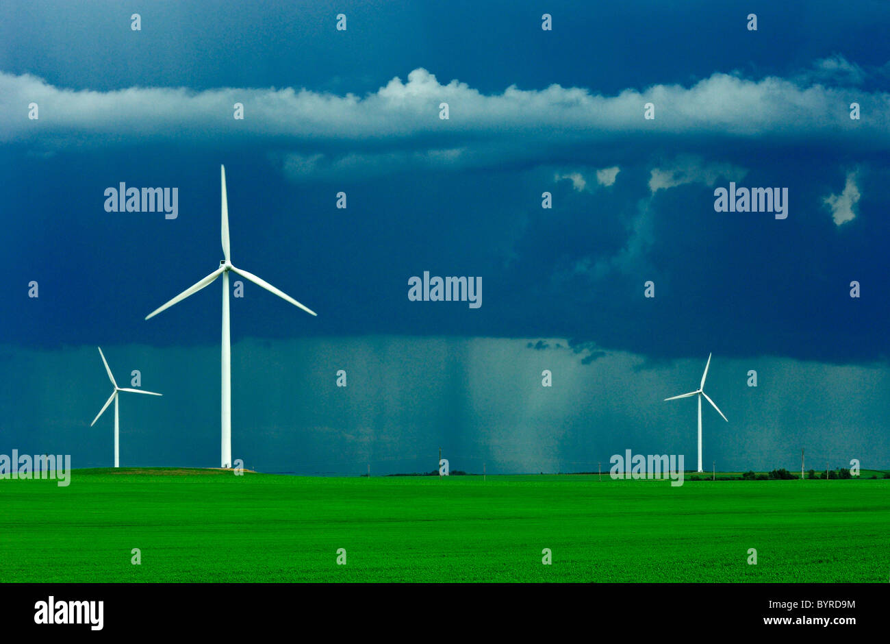 Wind turbines operate in an early growth wheat field with dark storm clouds above and a rain storm in the background - Stock Image