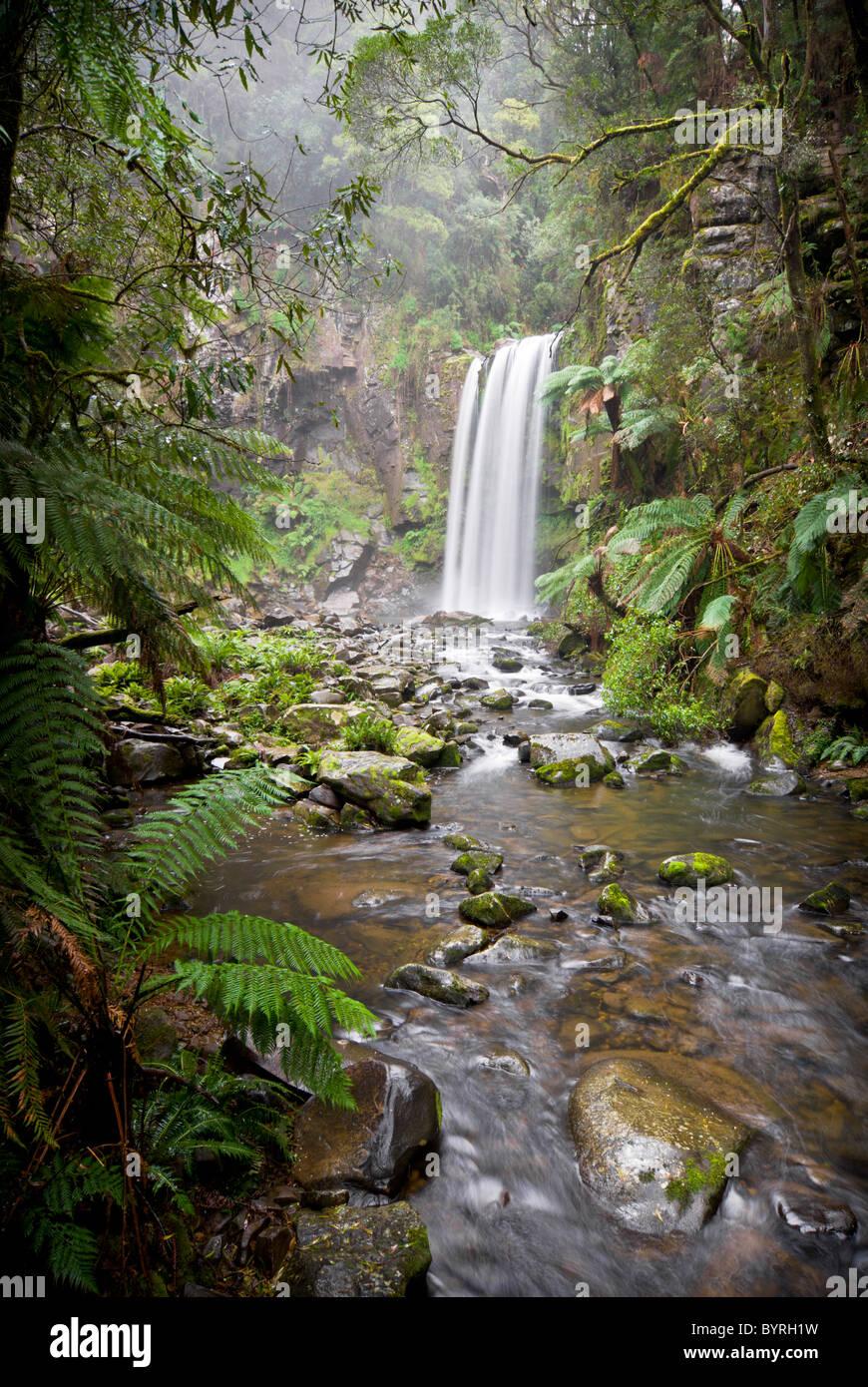Hopetoun Falls in the Otways rainforest - Stock Image