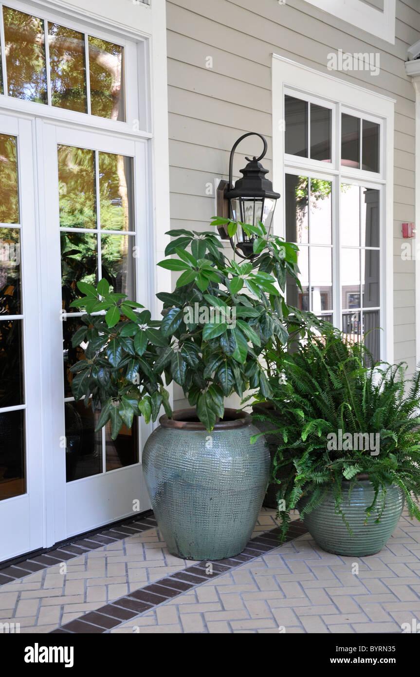 Several outdoor plants in large vases sitting on a covered porch by ornate glass doors. - Stock Image