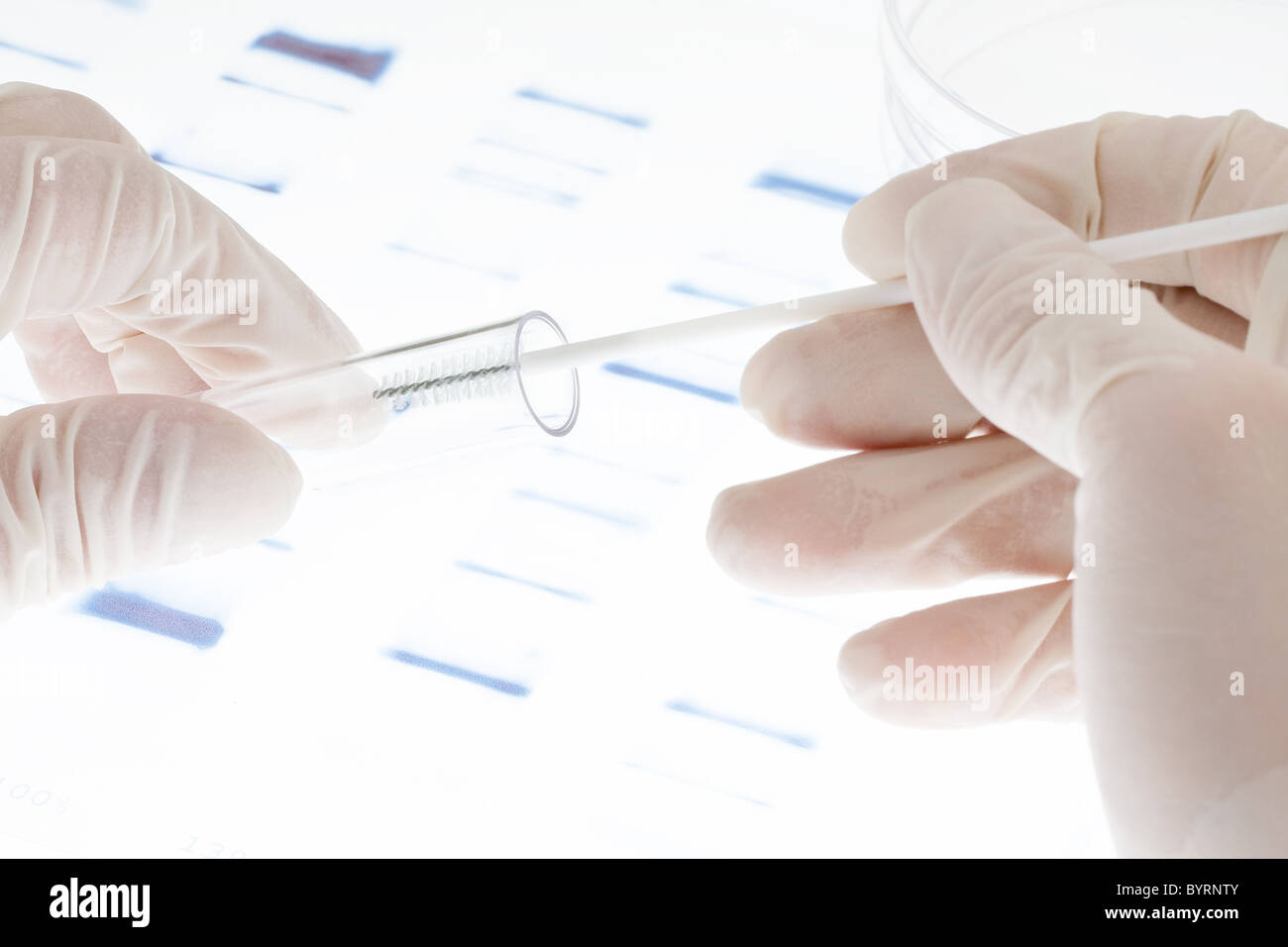 Researcher putting sample of DNA test into a test tube - Stock Image