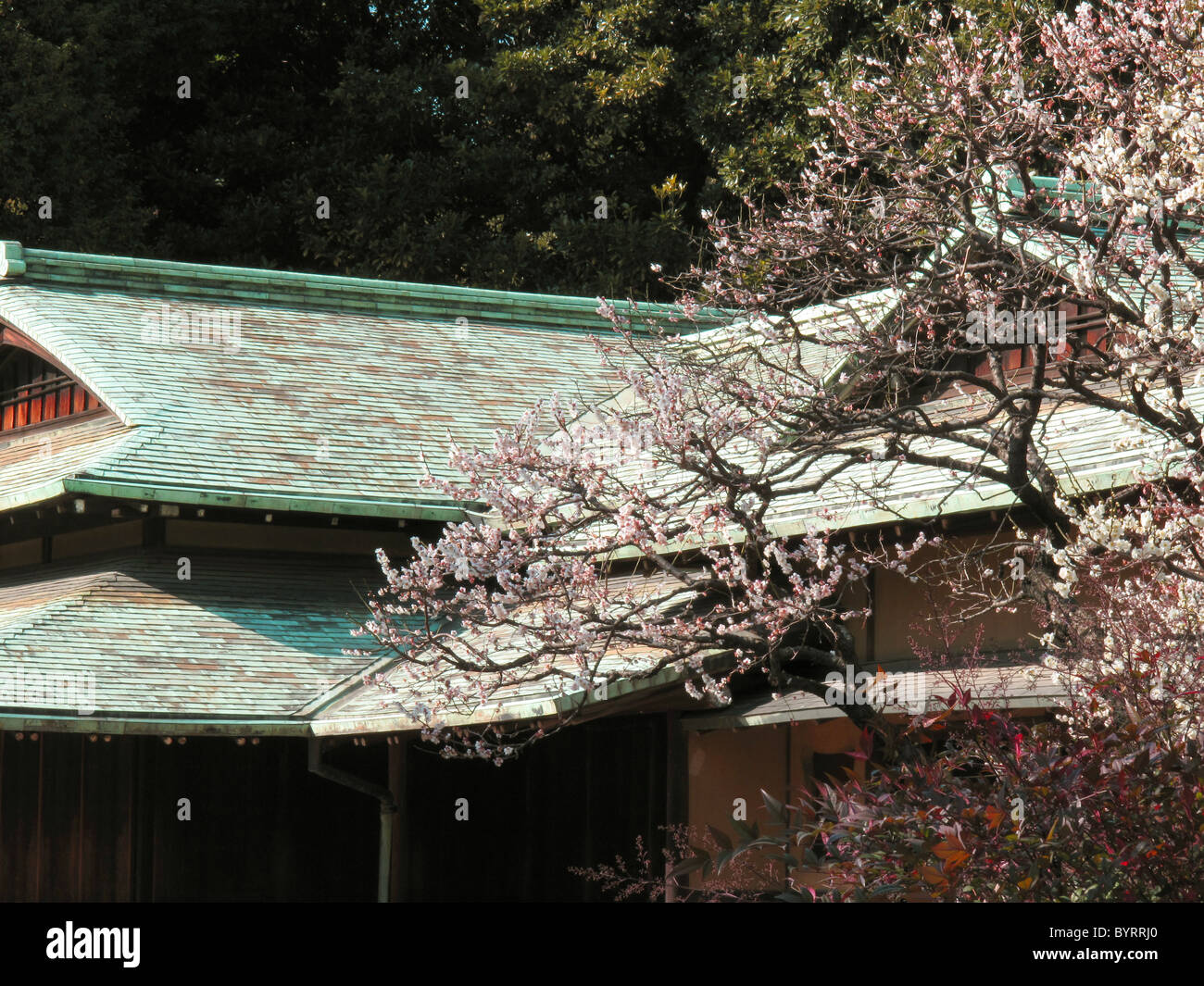 Suwano-chaya Tea House in the Imperial palace east gardens, Tokyo, Japan. Stock Photo