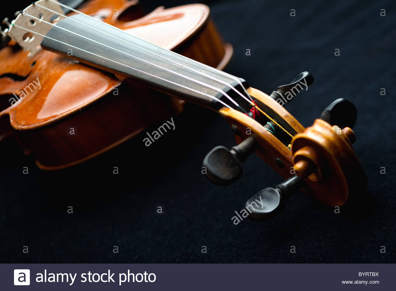 close-up of a Stradivarius style violin - Stock Image
