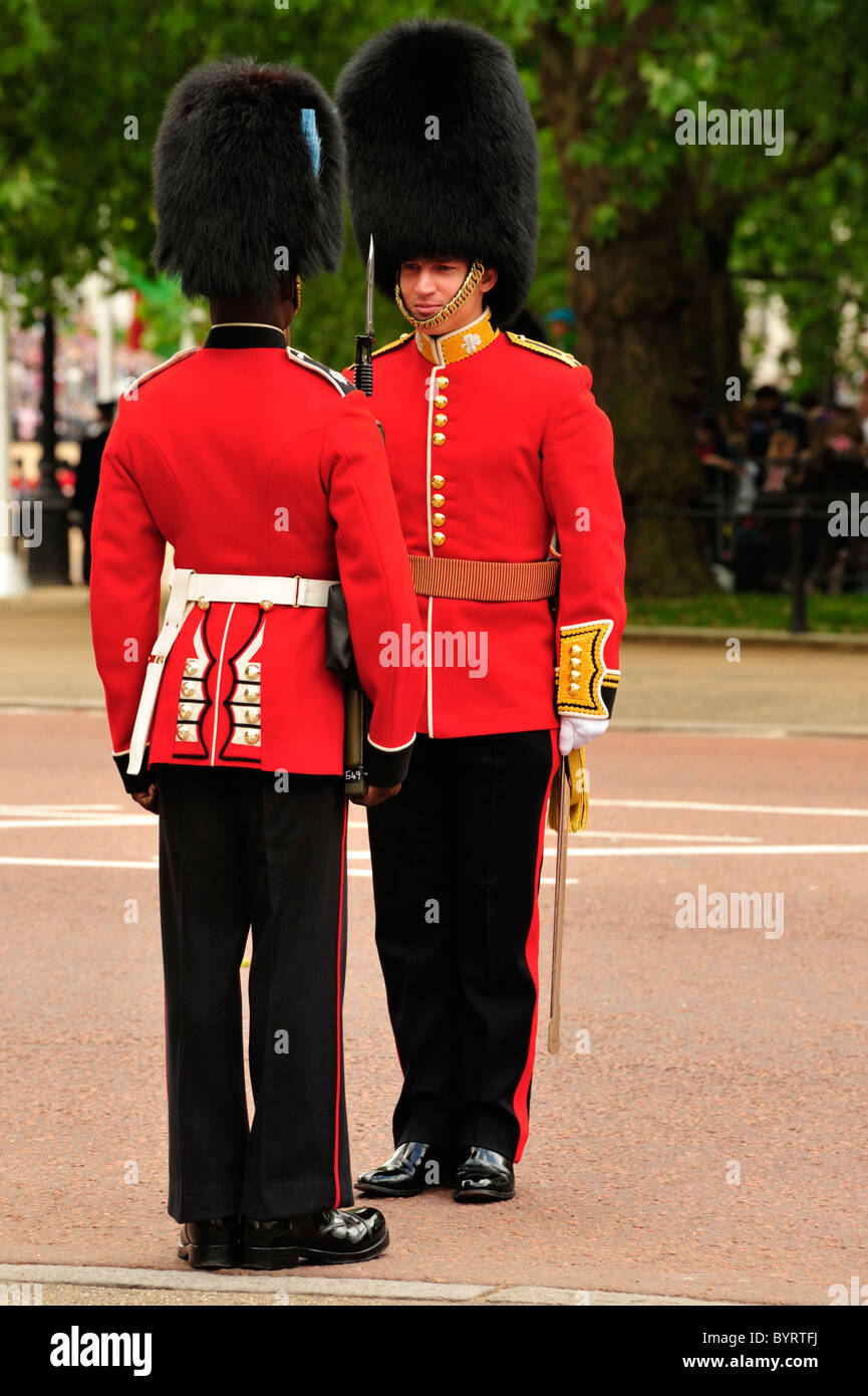 Trooping Colour Guards Officer Stock Photos & Trooping