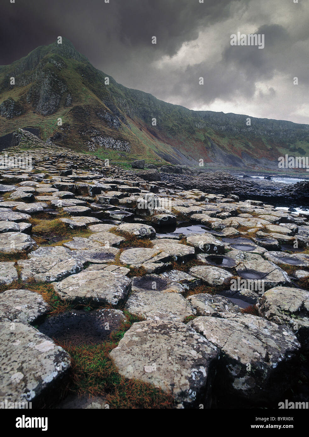 The Giant's Causeway in Northern Ireland - Stock Image