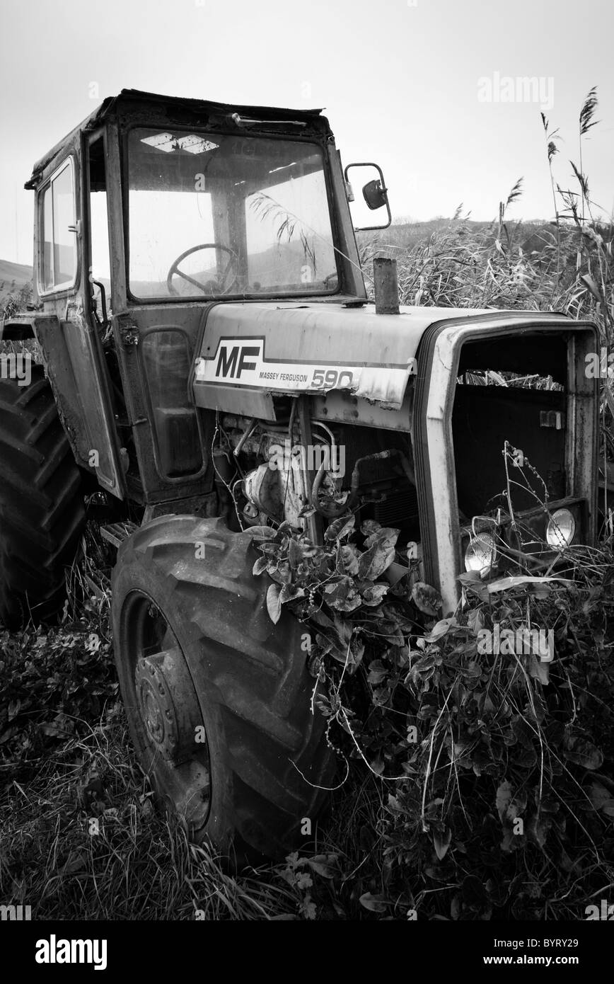 Disused and decrepit tractor, Massey Ferguson - Stock Image