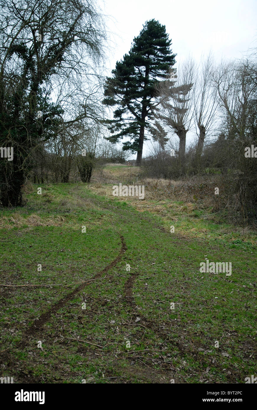Tracks left by illegal green lane motorcycling on greenbelt land in Northamptonshire, 6th February, 2011. - Stock Image