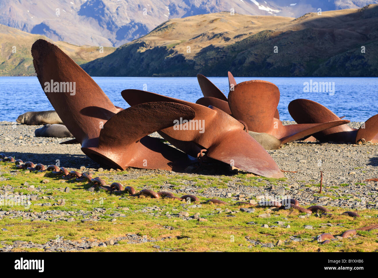 Old ship's propellers, Stromness, South Georgia - Stock Image