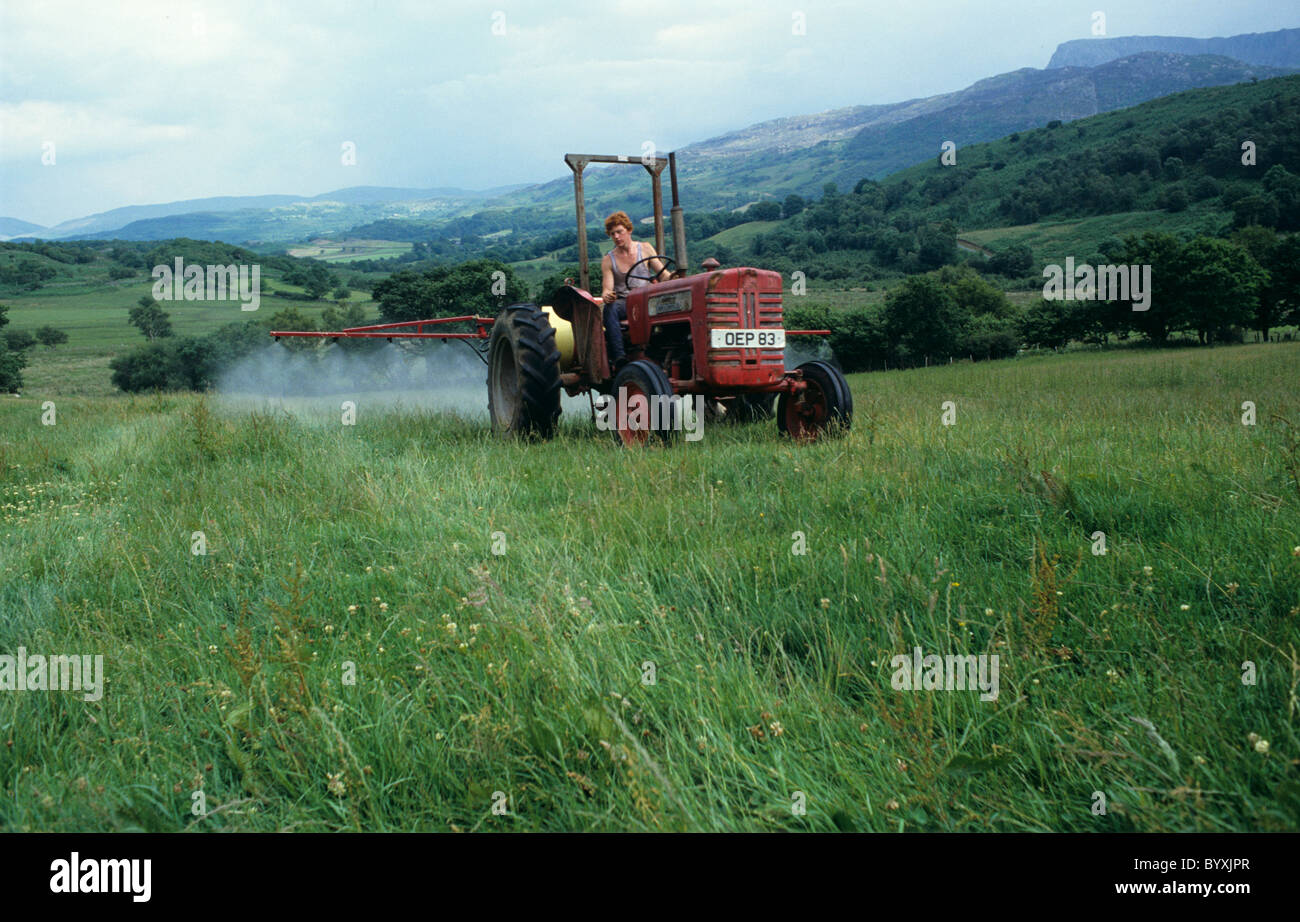 Old tractor and sprayer spraying off grassland with herbicide before ploughing and renovation - Stock Image