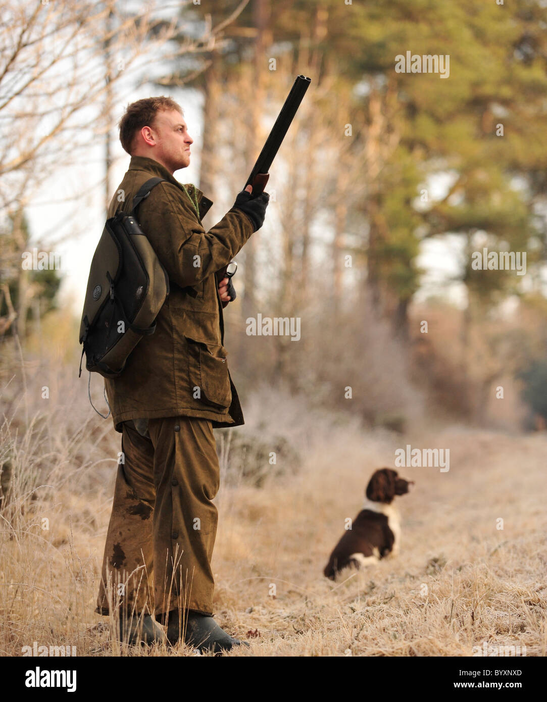 man shooting with his dog in UK - Stock Image
