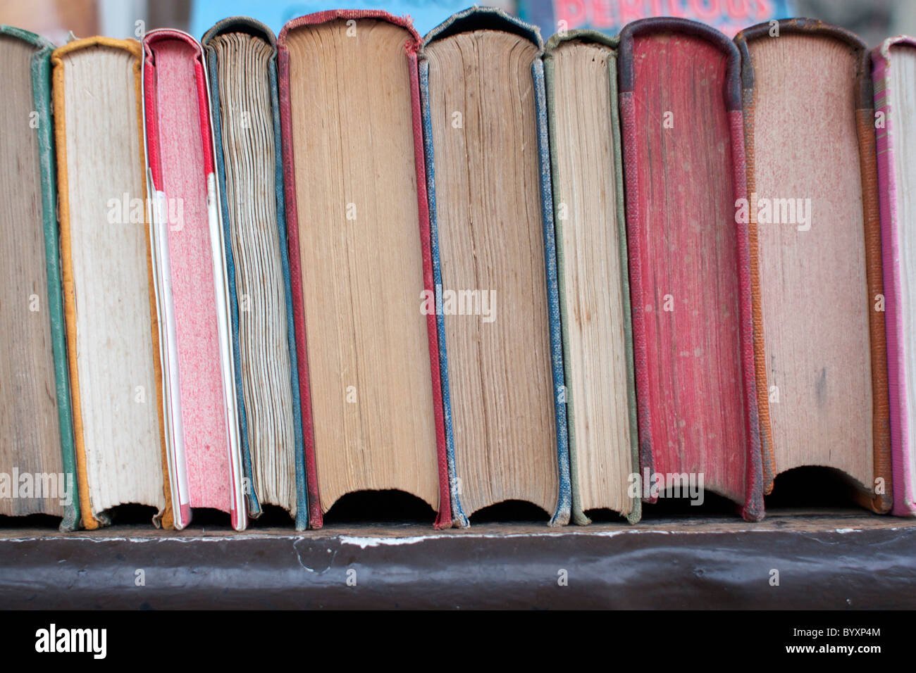 Secondhand Books For Sale in Norwich, Norfolk - Stock Image