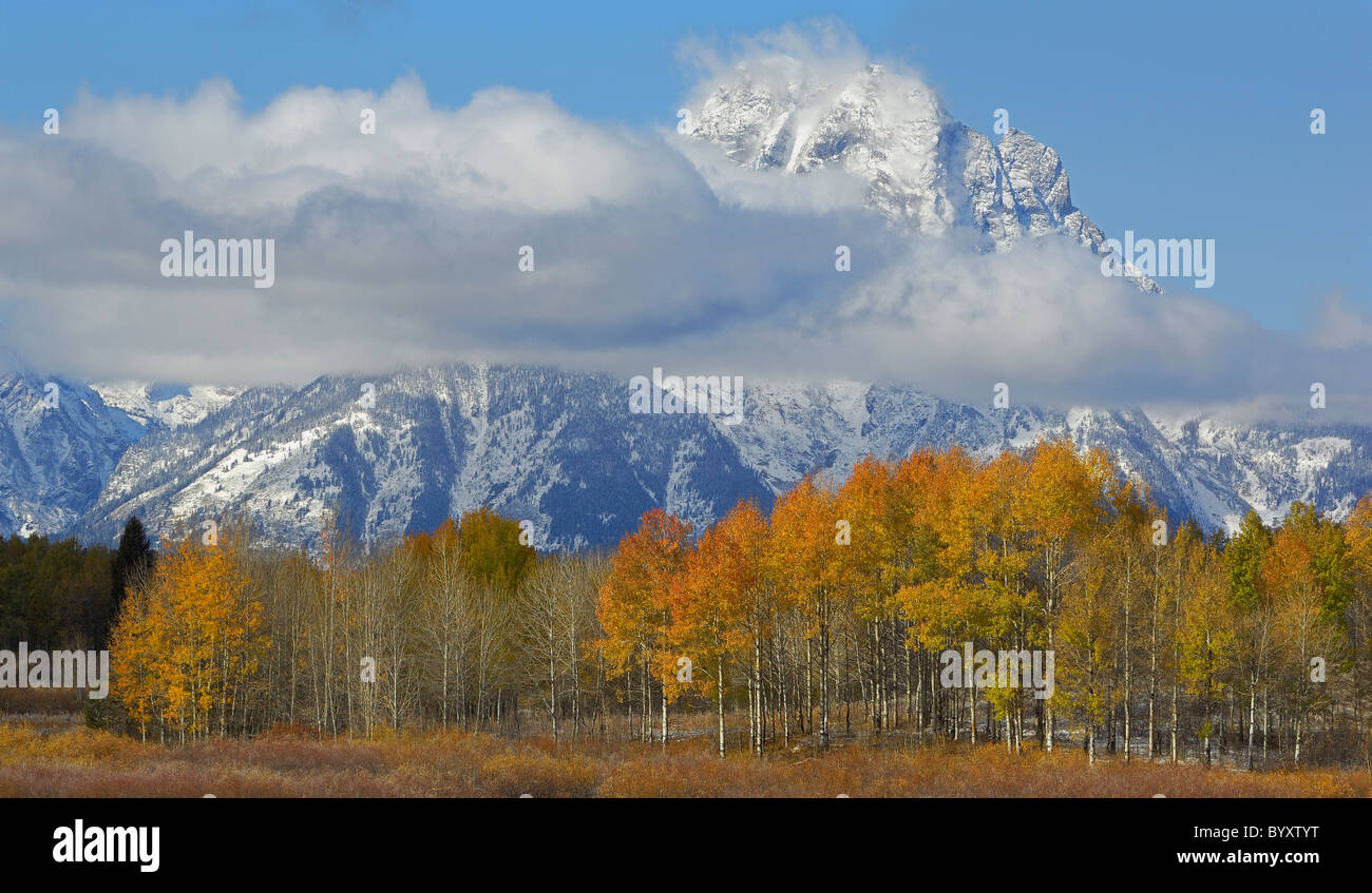 Grand Tetons in autumn. - Stock Image