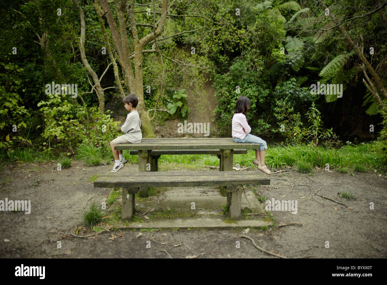 Boy and girl sit facing away from each other on wooden bench in forest, New Zealand. - Stock Image