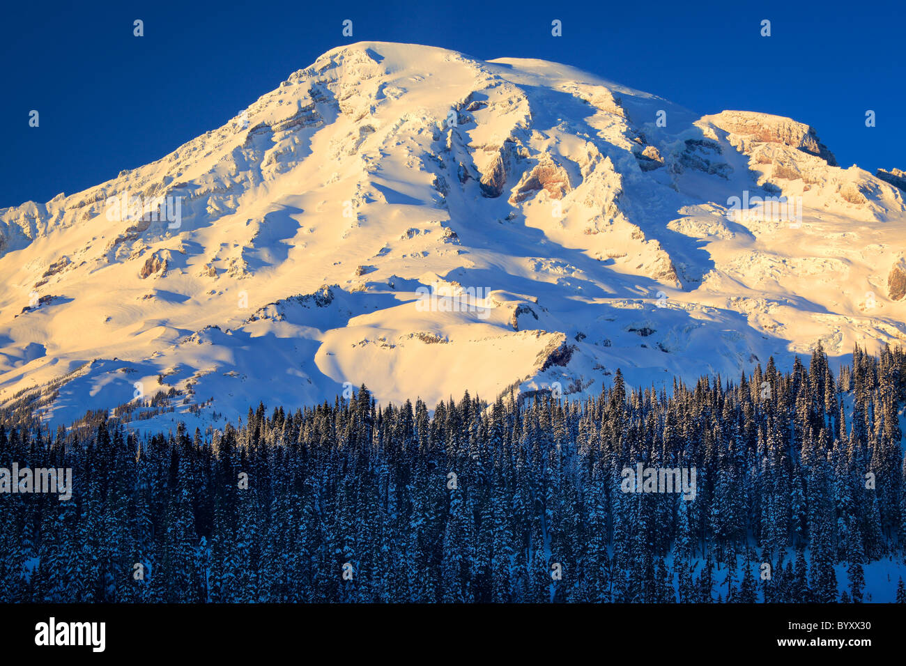 View of the south face of Mount Rainier at  sunset in the midst of winter - Stock Image