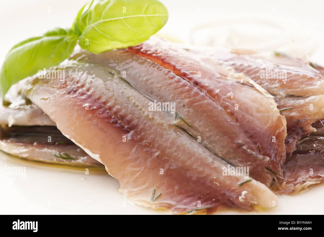 Marinated anchovies as closeup on white background - Stock Image
