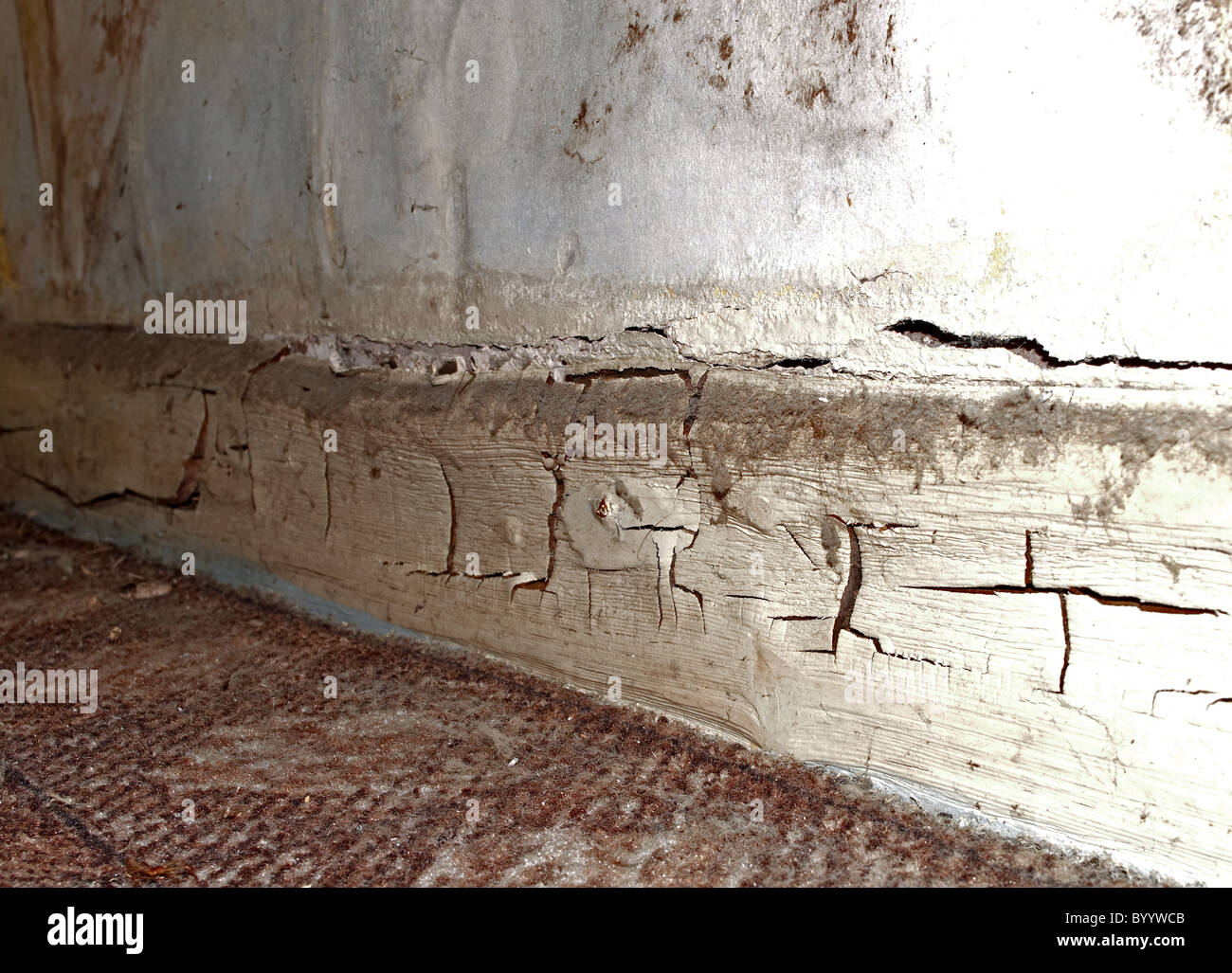 Dry rot in the skirting board of an old cottage - Stock Image