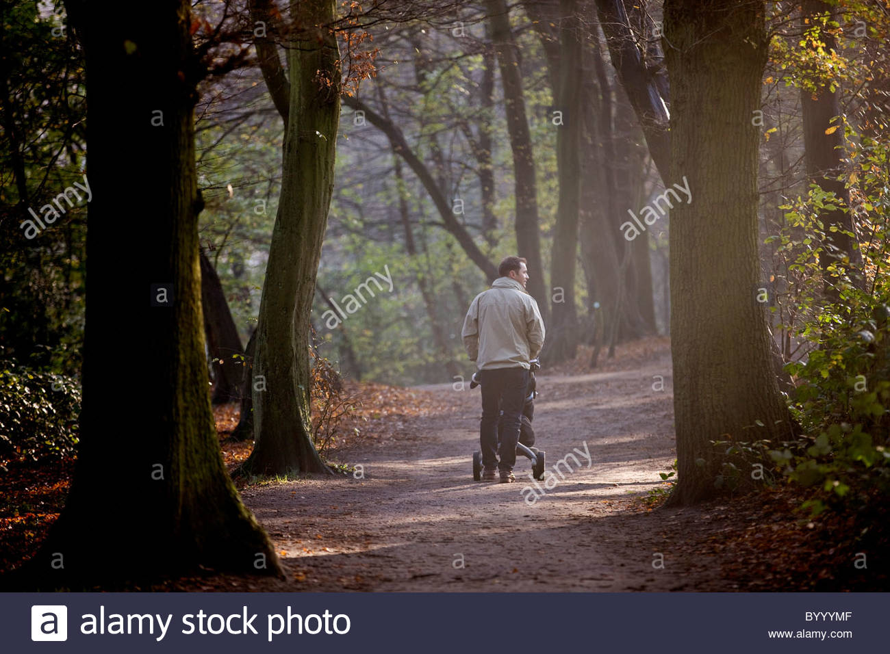 A young father pushing a stroller in the park, rear view - Stock Image