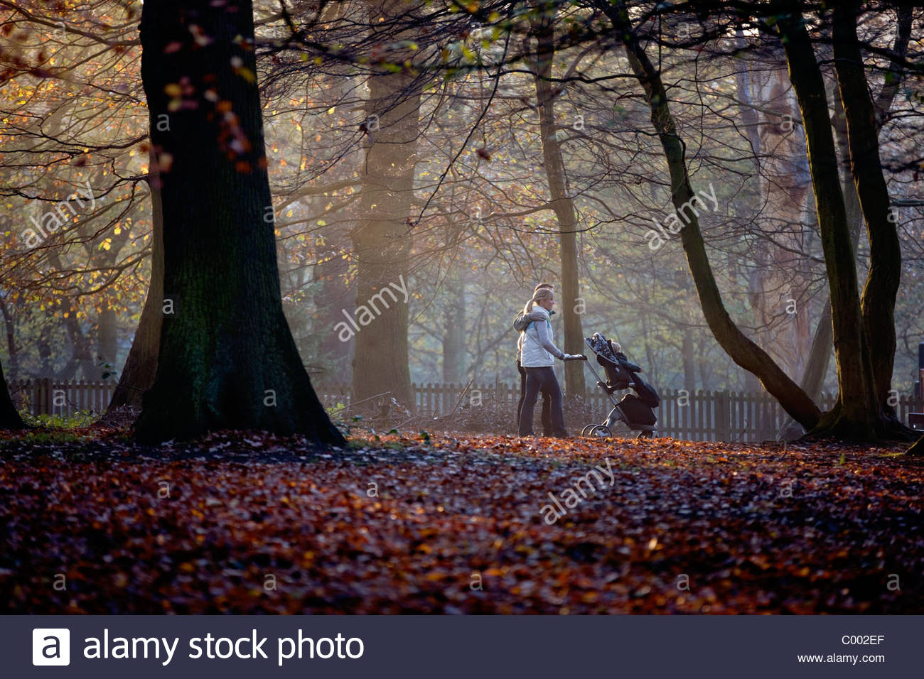 A young couple pushing a stroller in the park Stock Photo