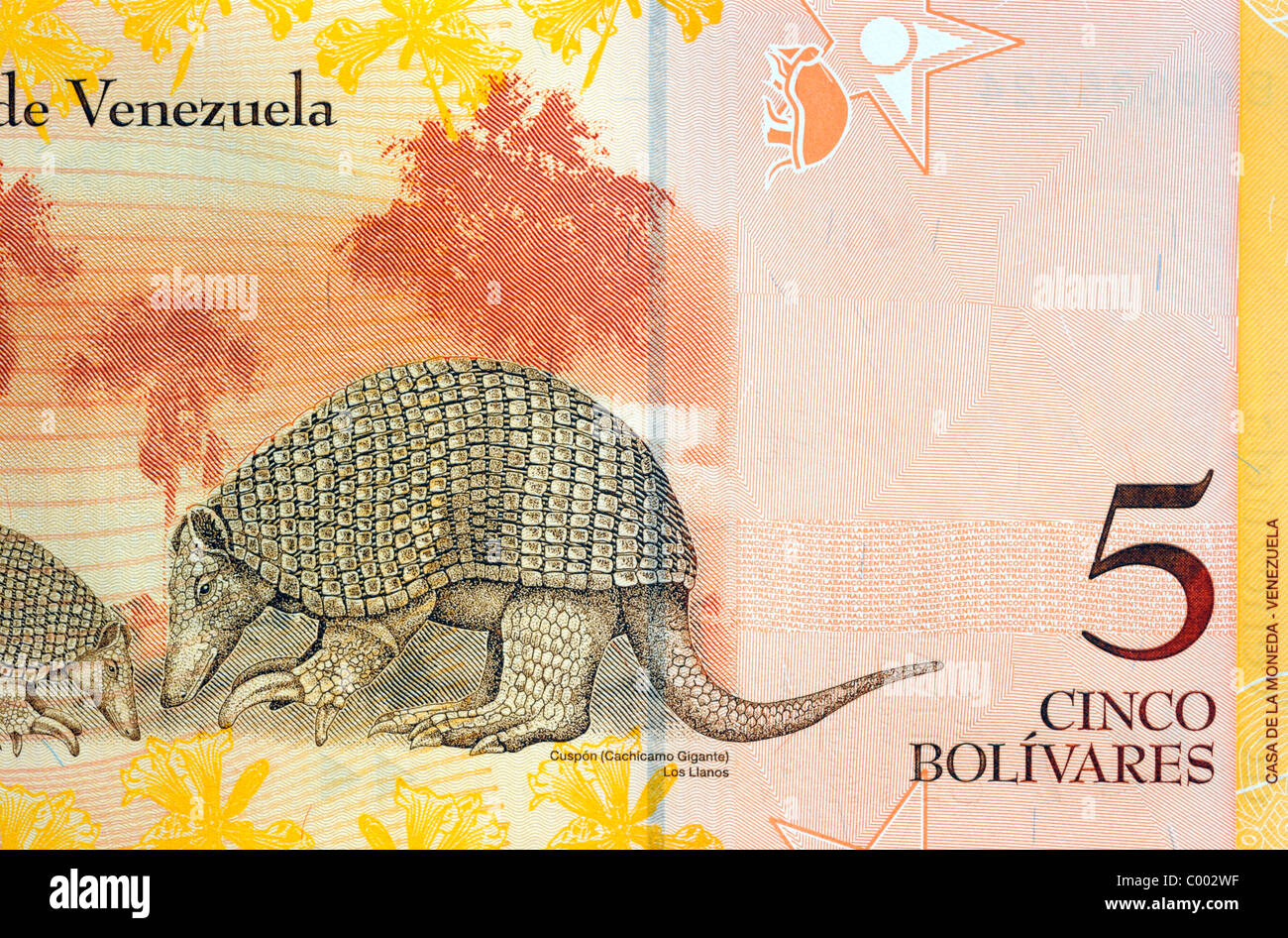 Venezuela 5 Five Cinco Bolivares Bank Note. - Stock Image