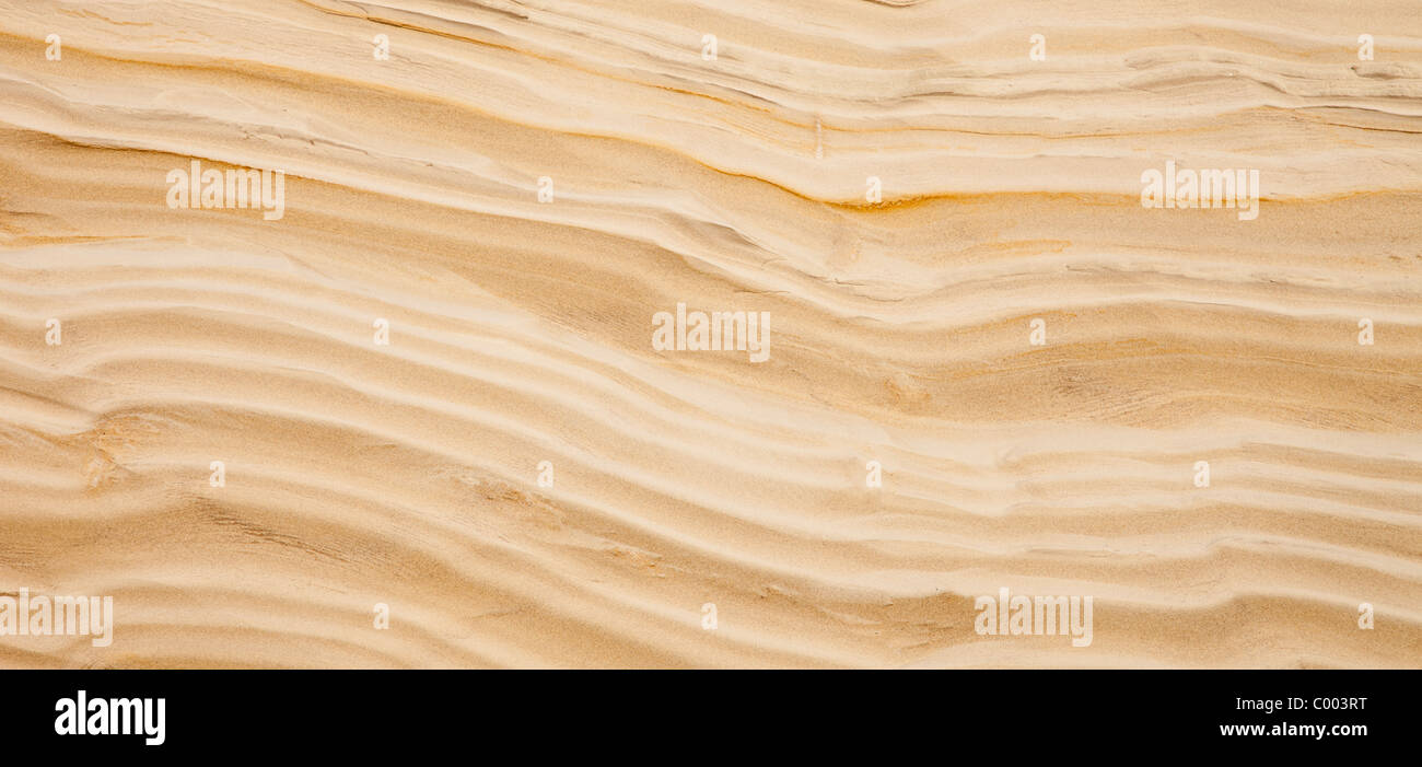 Cross-section of the soil in a sandy ridge , formed by the ice age - Stock Image
