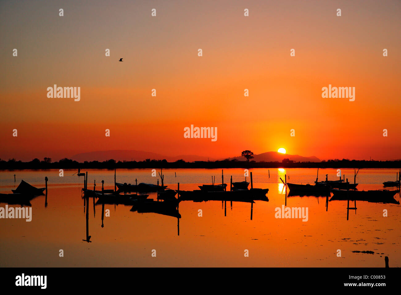 Sunset in the lagoon of Messolonghi with all those beautiful traditional boats, called 'gaitas' in the first - Stock Image