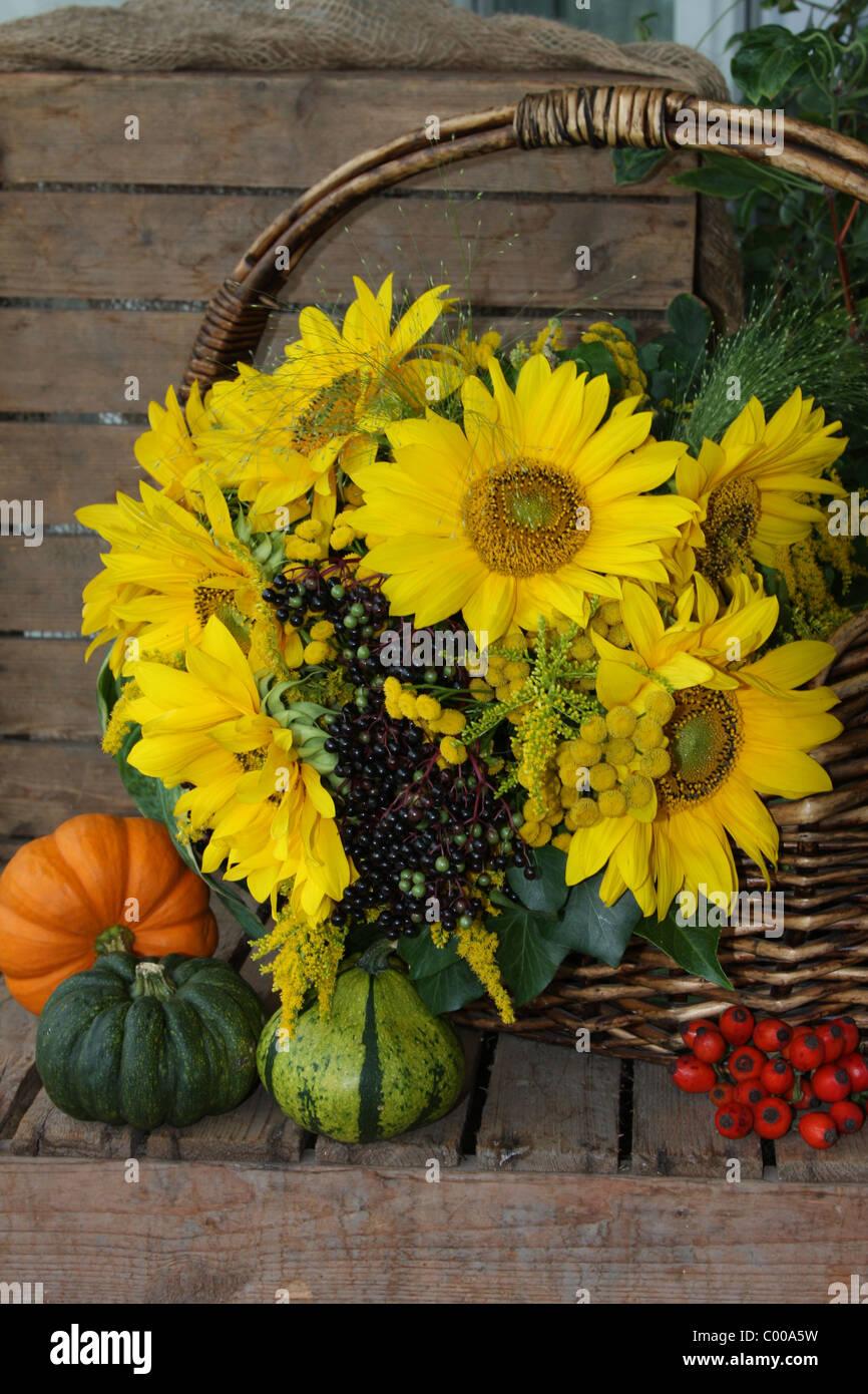 Herbstliches Stilleben, Sonnenblumen, Kuerbisse, Hagebutten, Autumn harvest, Still life, Sunflower, Pumpins, Rose Stock Photo