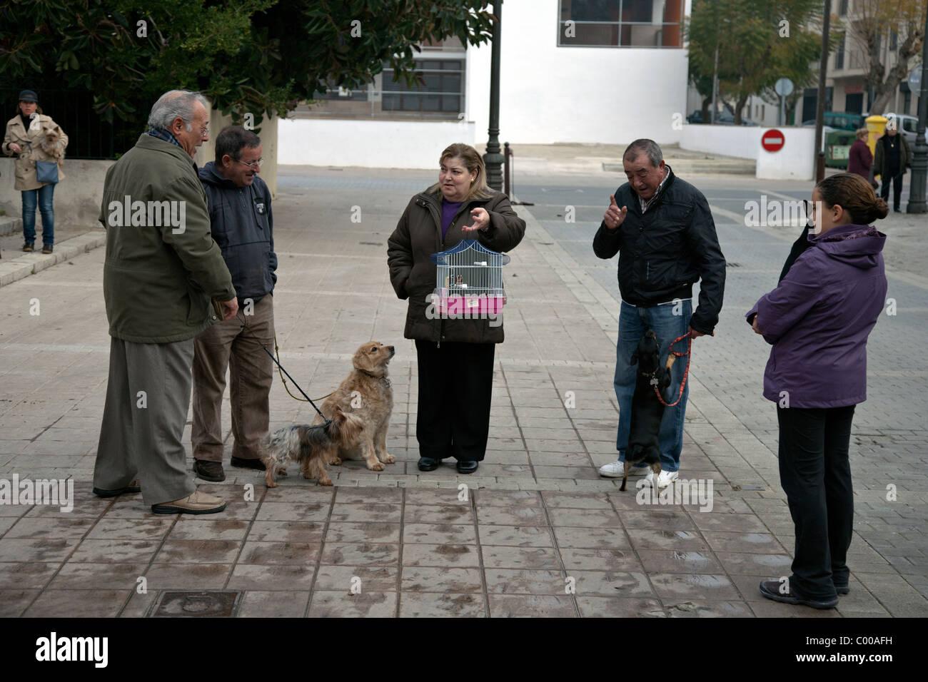 pet owners waiting in puerto pollensa in spain - Stock Image