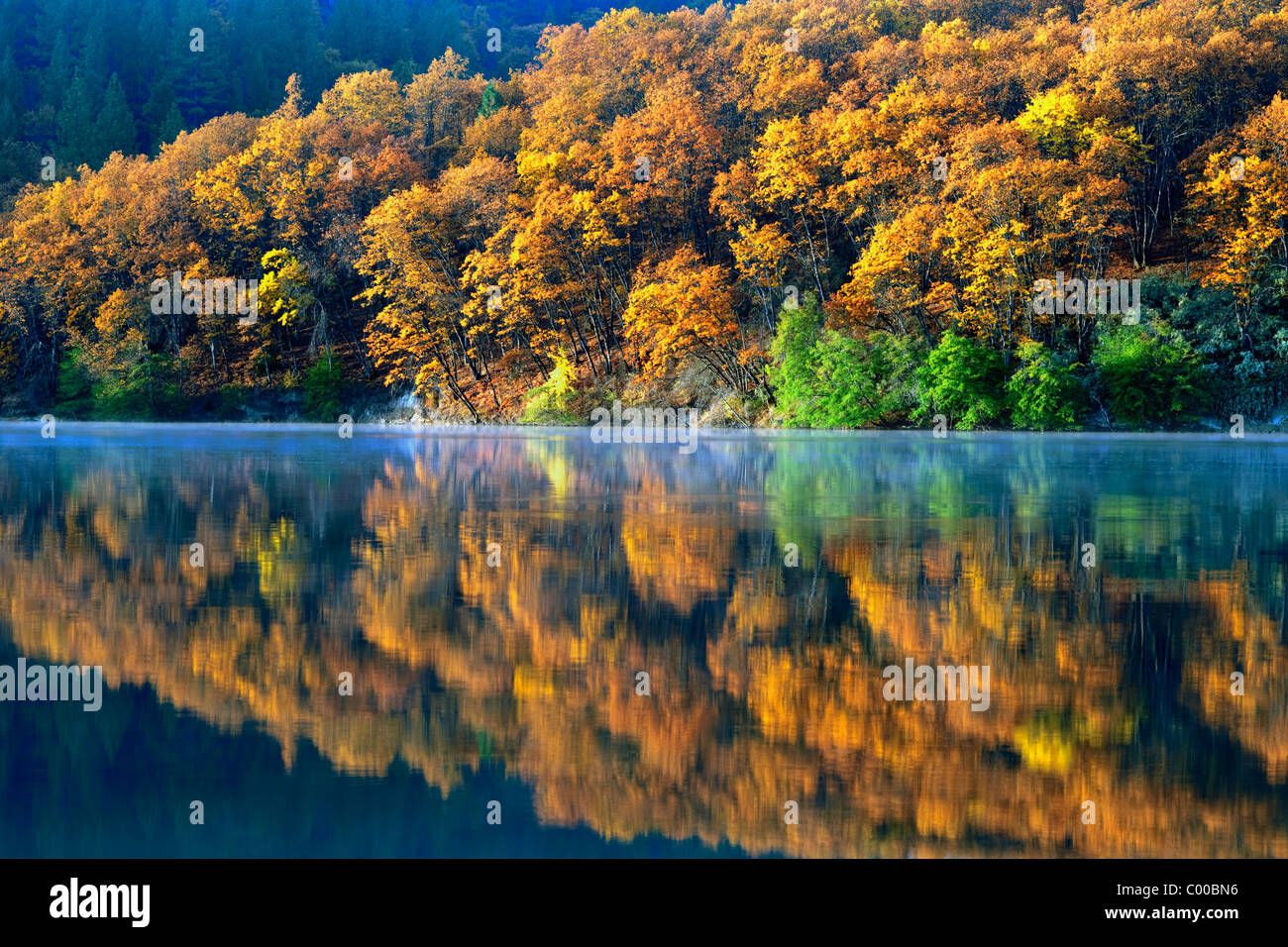 Autumn morning reflection as mist forms on California's Lake Britton. - Stock Image