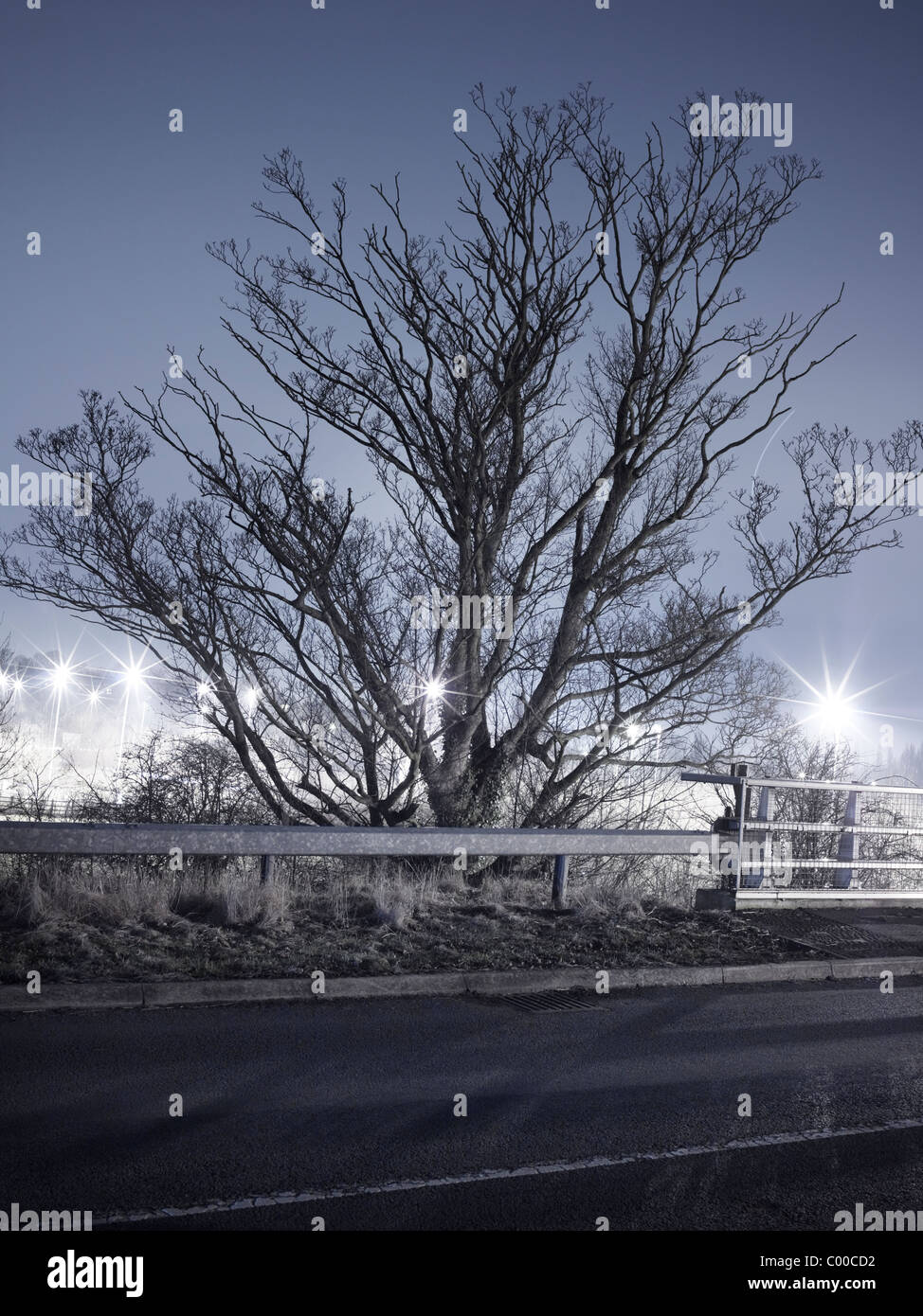 Road and trees lit by street lights at night with blue sky , taken by roadside locations - Stock Image