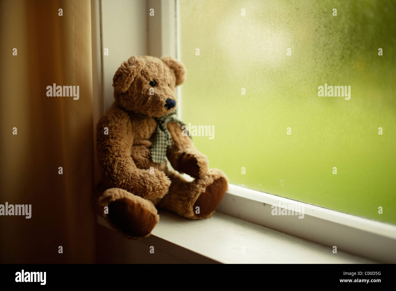 Teddy bear looks out of window - Stock Image