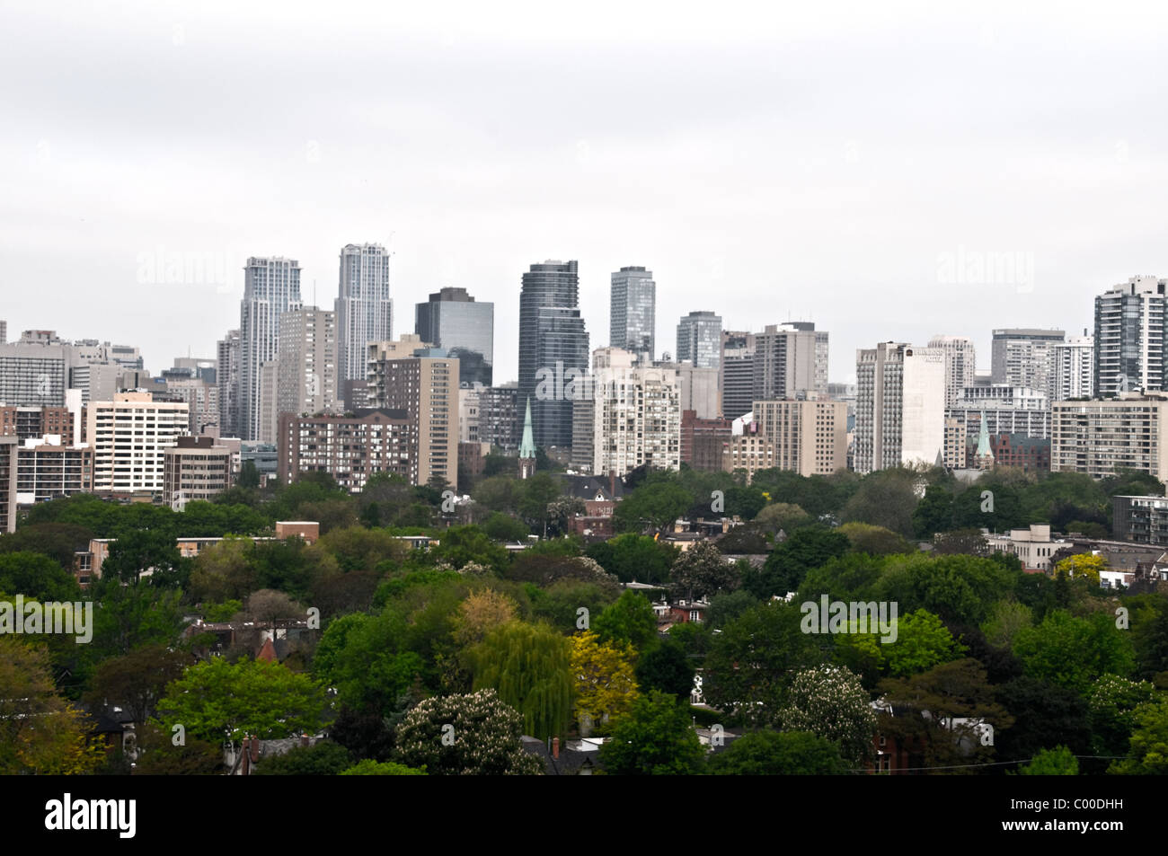 A view of downtown Toronto condo buildings along Yonge Street, and the neighbourhood of Cabbagetown in the foreground. - Stock Image