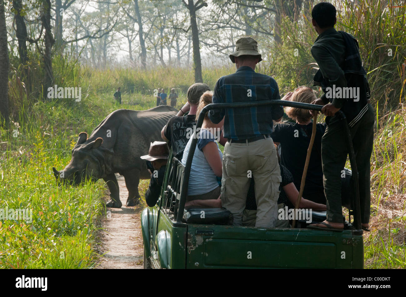 tourists watching One Horned Asian rhinoceros in Chitwan National Park, Nepal - Stock Image
