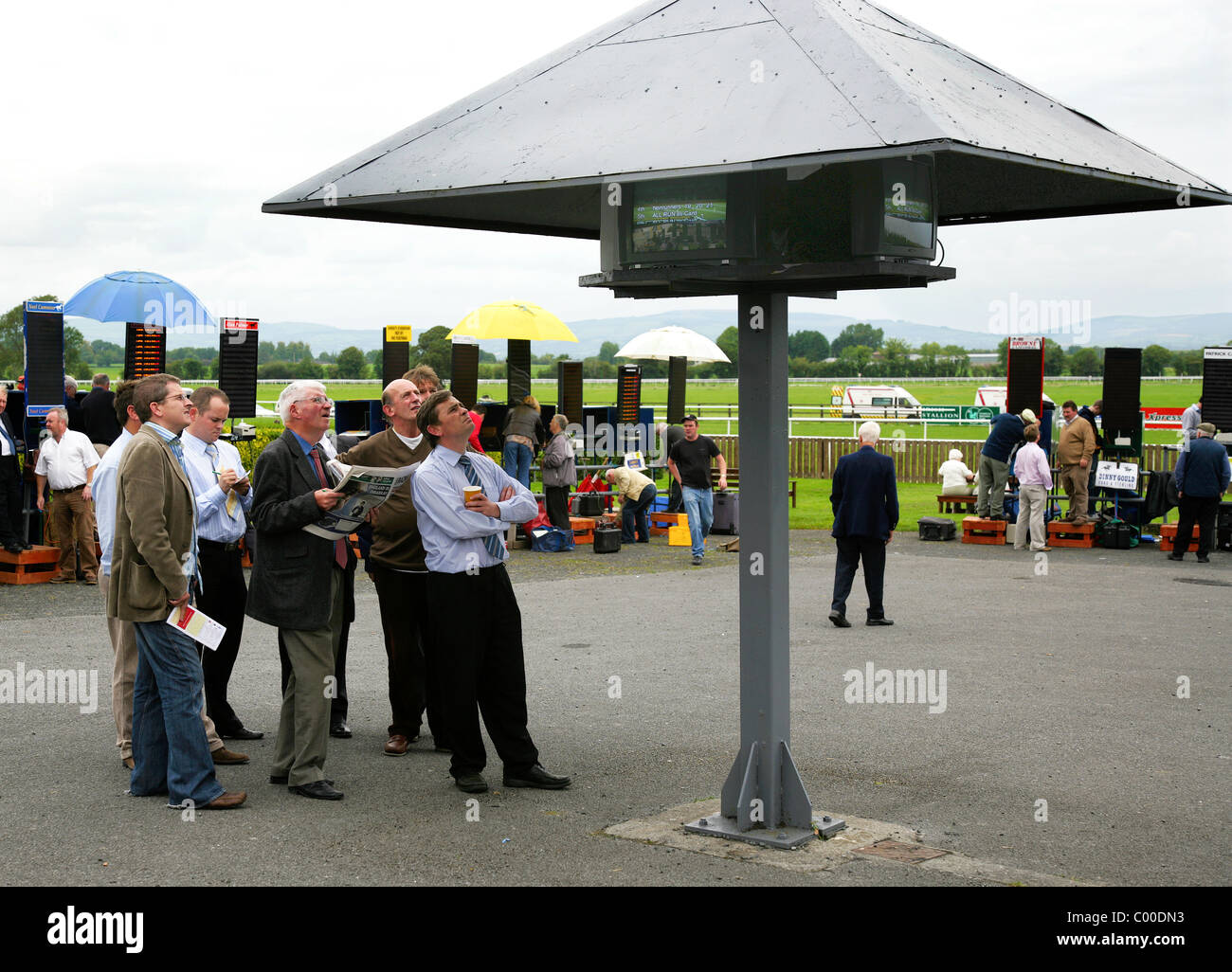 A group of men at a Racecourse, studying the Betting Odds on Monitors - Stock Image
