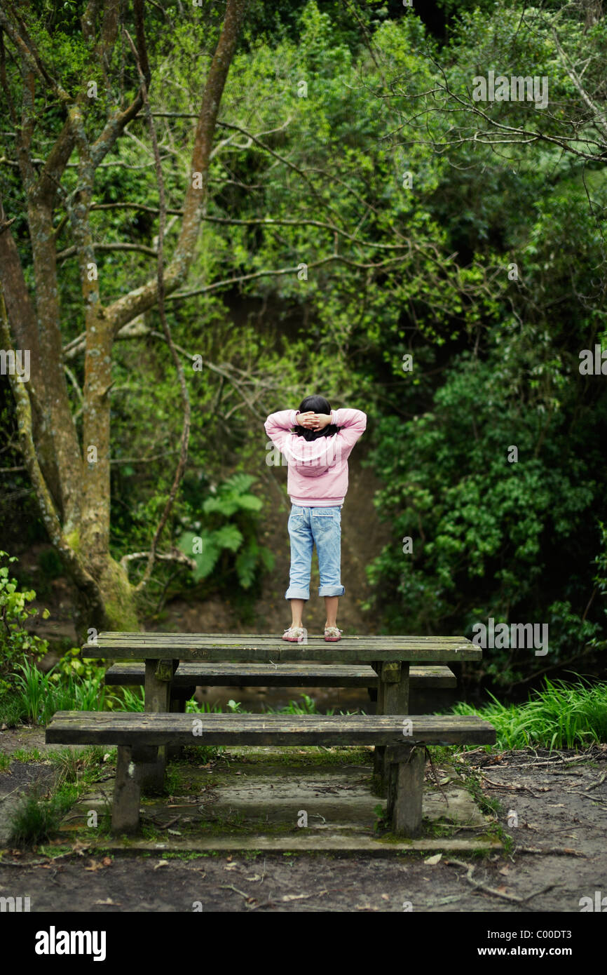 Girl stands on bench and looks at native forest, New Zealand. - Stock Image