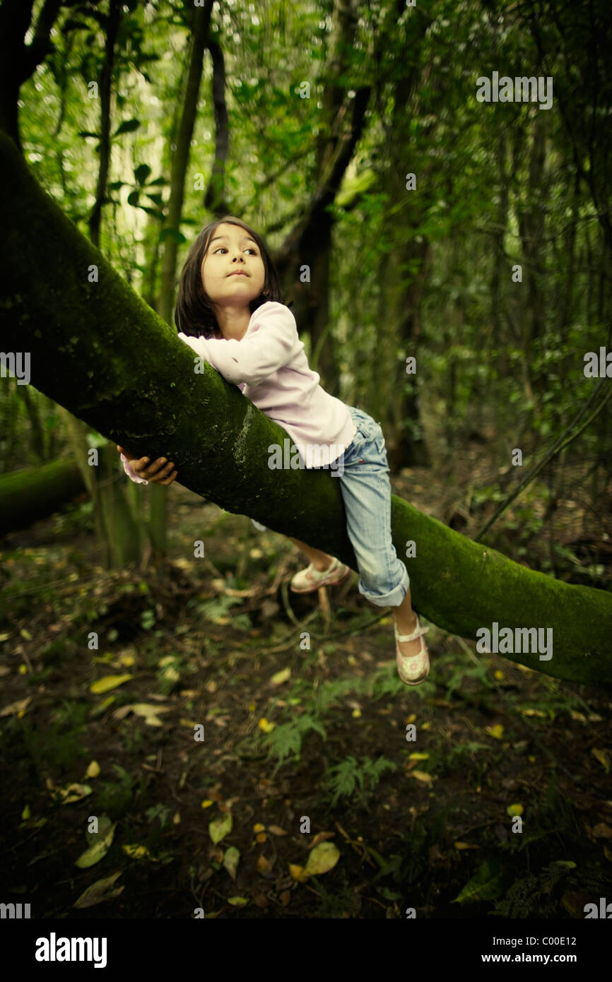 Like a leopard. Girl rests on tree trunk, New Zealand. - Stock Image