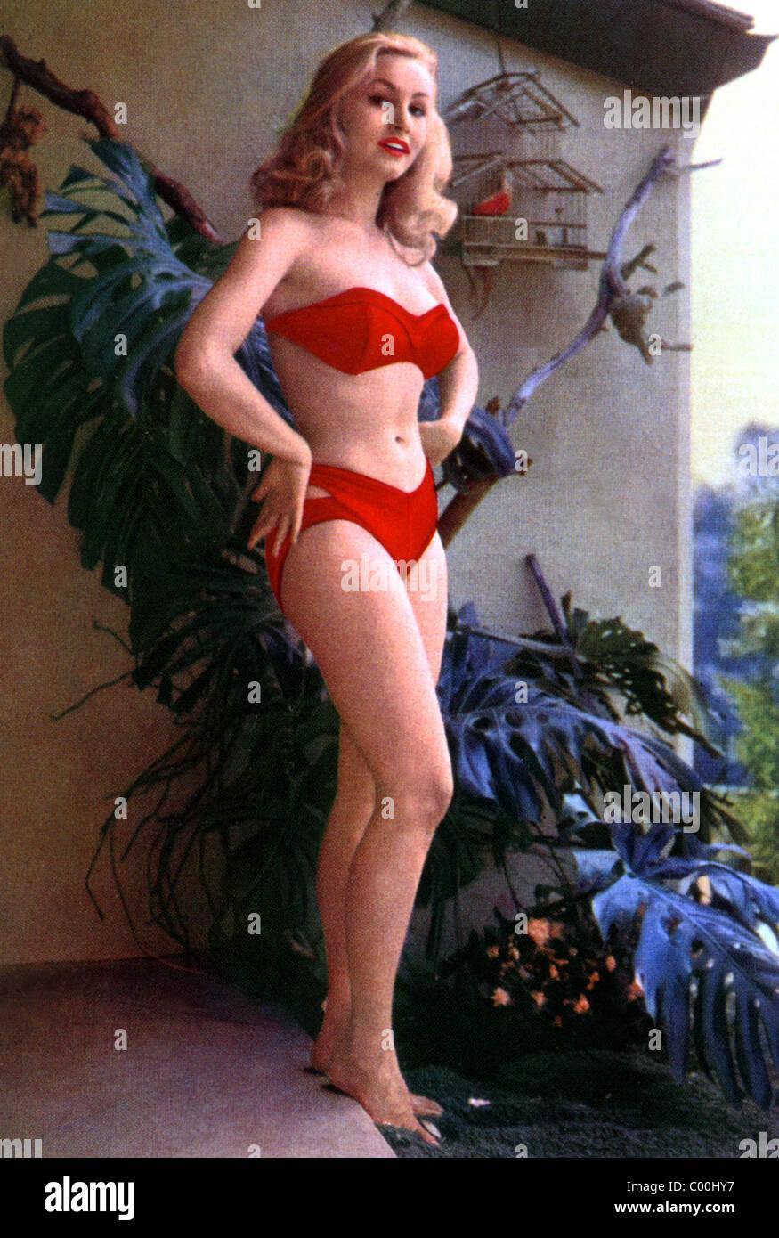 JULIE NEWMAR ACTRESS (1953) - Stock Image