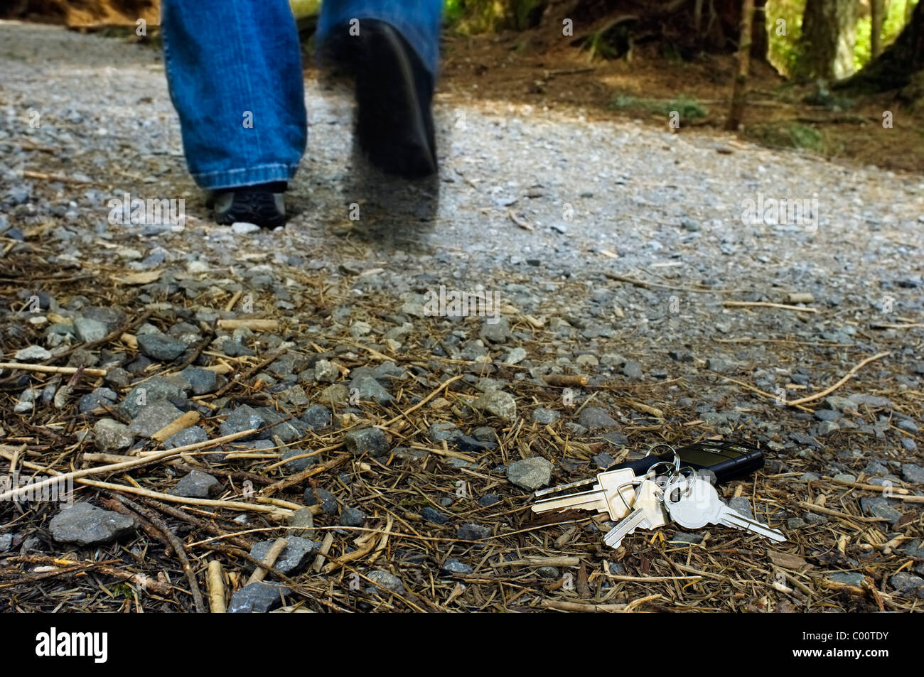 A set of house and car keys lay on the forest trail as a person walks away from them. - Stock Image