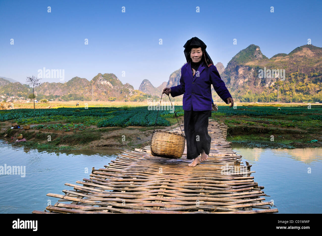 Woman carrying a basket crossing a woven bridge, dry Halong Bay, Vietnam, Asia - Stock Image
