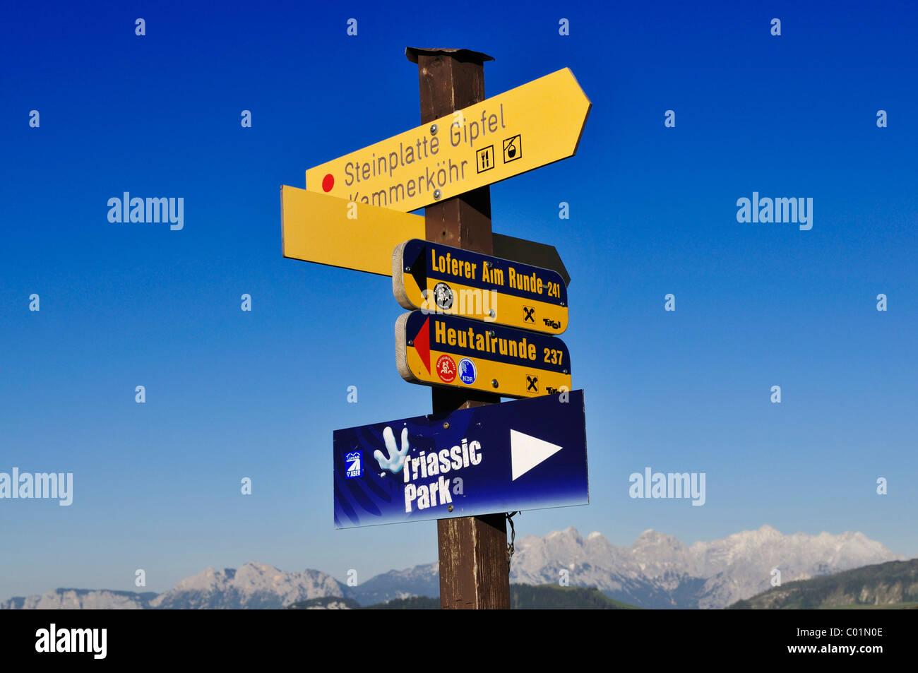 Sign to Steinplatte peak, Triassic Park, Reit im Winkl, Bavaria, Germany, Waidring, Tyrol, Austria, Europe - Stock Image