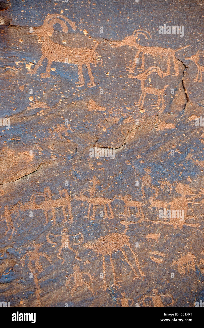 Ca. 3000 year old rock paintings by Native American Indians, Sand Island, near Bluff, Northern Utah, USA, North - Stock Image