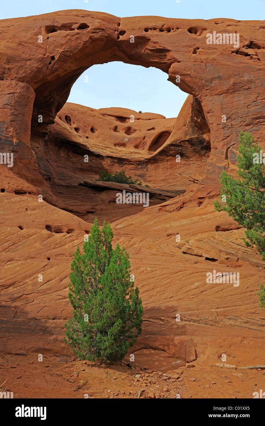 Honeymoon Arch, Mystery Valley, Arizona, USA, North America - Stock Image