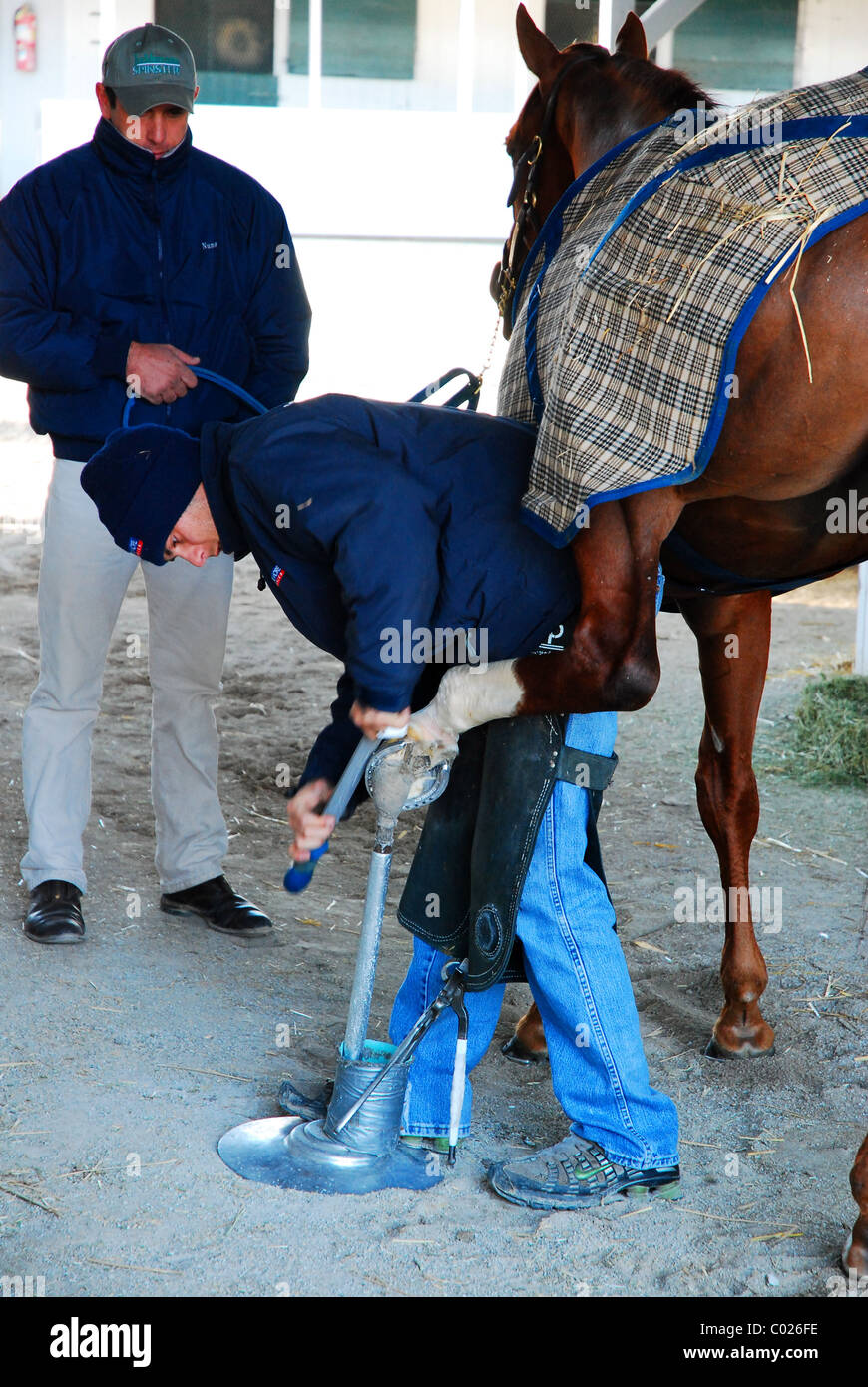 Workers file a hoof on a thoroughbred racehorse in the stable area of Keeneland Race Track, Lexington, Kentucky. - Stock Image