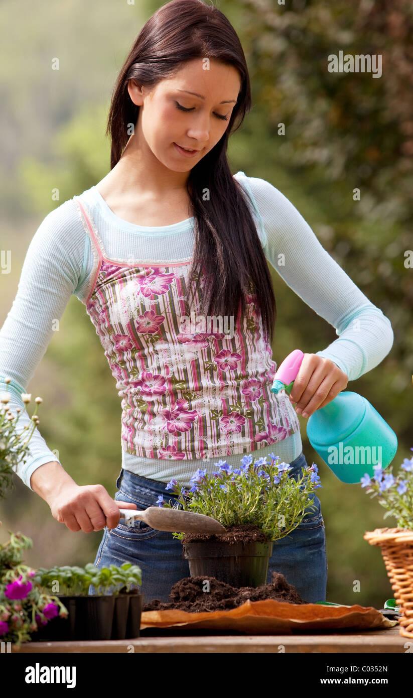 woman, gardening - Stock Image